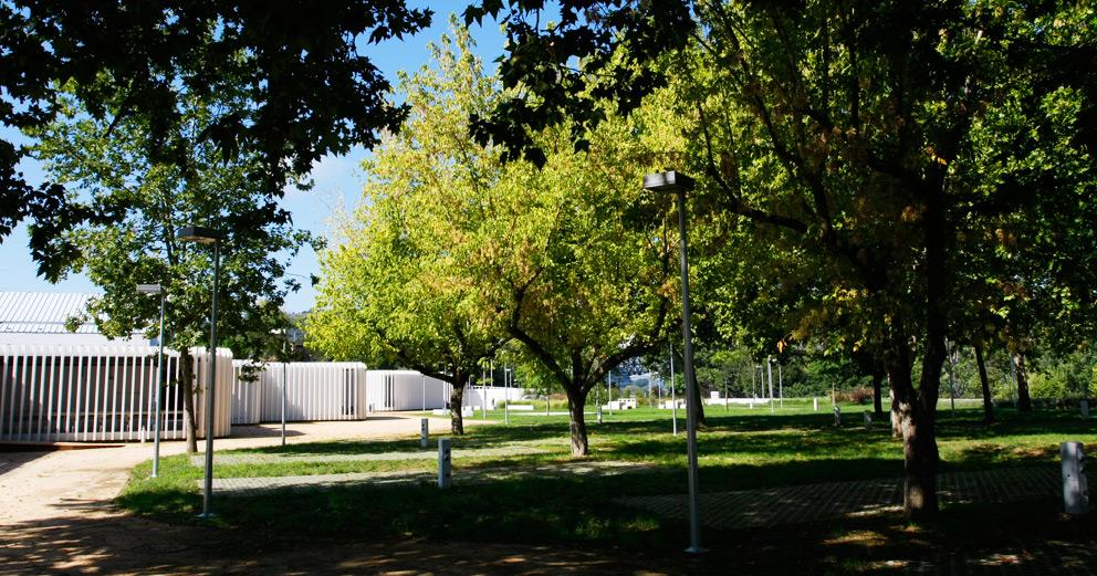 Parque Tejo
